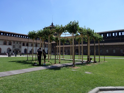Arbor in the Castle