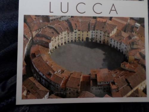 The Lucca Amfiteatro